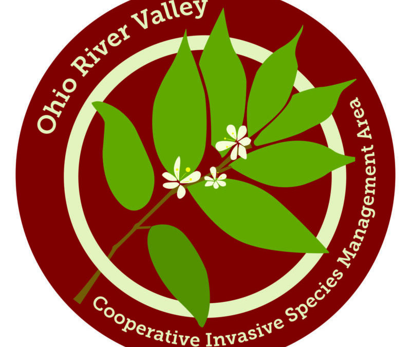 Ohio River Valley Cooperative Invasive Species Management Area launches website