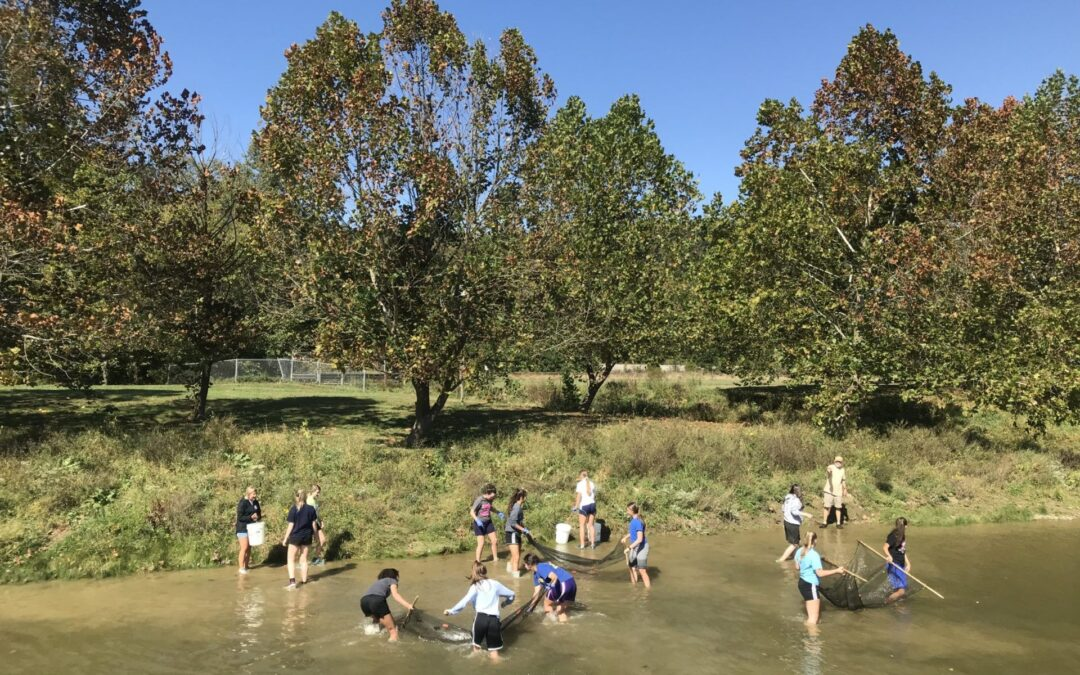 Mussels in the Classroom and River Explorer Growing in Popularity