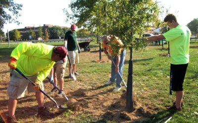 Community Volunteers planting trees