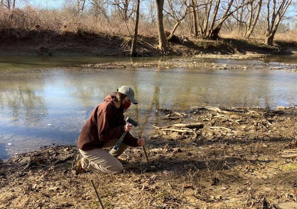 Ohio River Foundation begins area's largest habitat restoration with Coors Seltzer funds