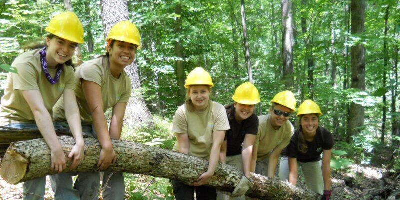 ORF Employees holding large tree log